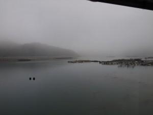 濃霧(20160307)