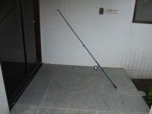 コノシロ釣りの釣り竿